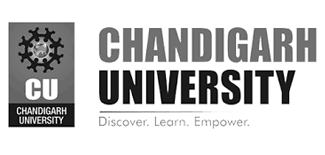 assignment help for chandigarh university