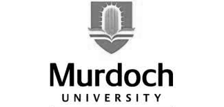 assignment help for murdoch university in uae