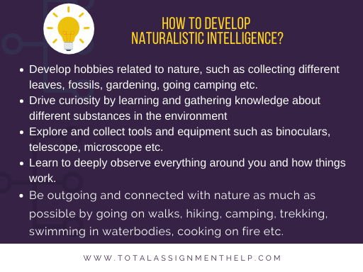 Naturalistic Intelligence