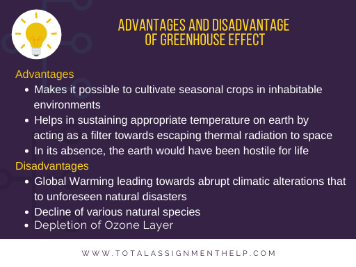 /disadvantages and advantages of greenhouse