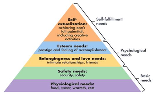 Maslows's hierarchy theory of motivation