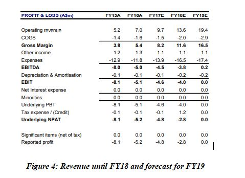 Revenue FY18 forecast FY19 BTH business model