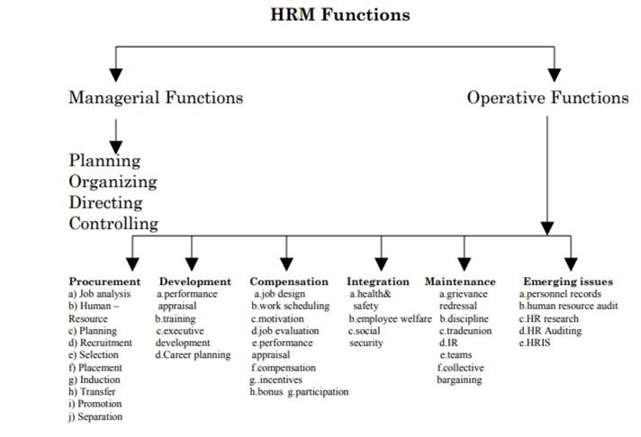 Sainsbury HRM functions