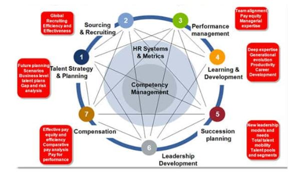 Talent Management in HRM assignment