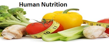 human-nutrition-nursing-assignment-help